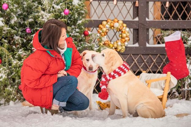 Una donna gioca con cani labradorsmi vicino a un albero di natale decorato durante una nevicata in inverno nel cortile di un condominio.