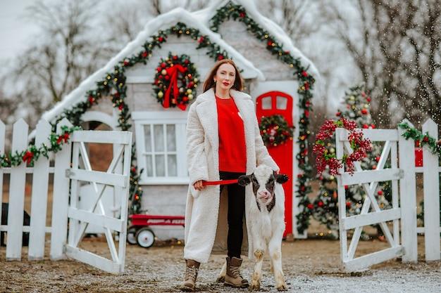 Donna in posa con il giovane toro bianco e nero nel ranch di natale con decorazioni per le vacanze.