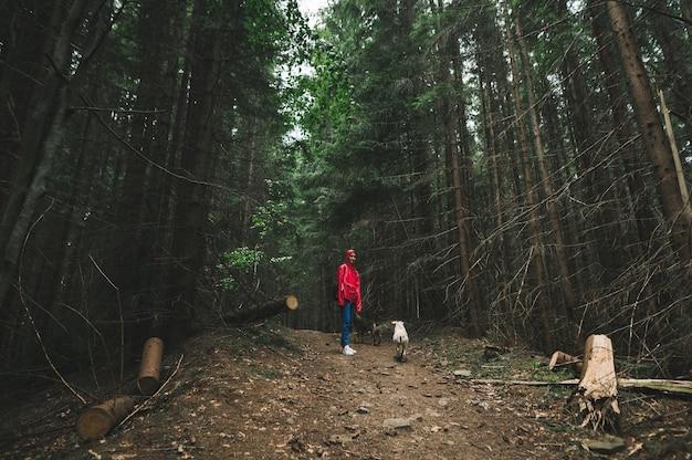 Una donna in giacca rossa e con due cani sta nella foresta