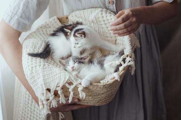 Donna in abito rustico che tiene cesto con simpatici gattini. adorabili gattini grigi e bianchi che sonnecchiano su una coperta nel cestino. concetto di adozione. dolce bel momento atmosferico