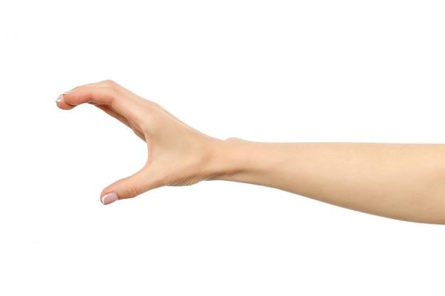 La mano della donna che afferra o che misura qualcosa