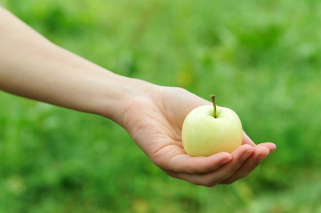 La mano della donna che tiene una mela