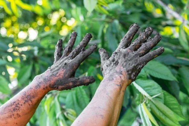 Mani della donna nel fango terapeutico su uno sfondo di foglie verdi