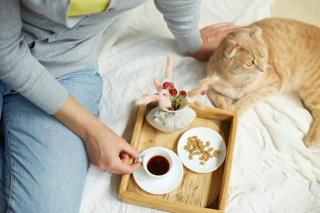 Donna seduta sul letto e bere caffè, alimentazione del gatto durante la luce del sole del mattino, colazione a letto. femmina con animale domestico,