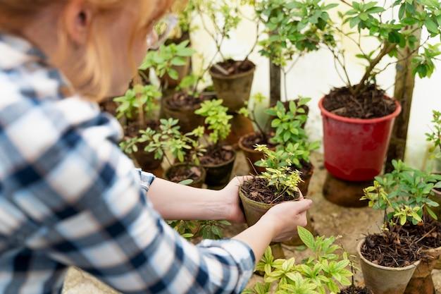 Donna che si prende cura delle sue piante in una serra