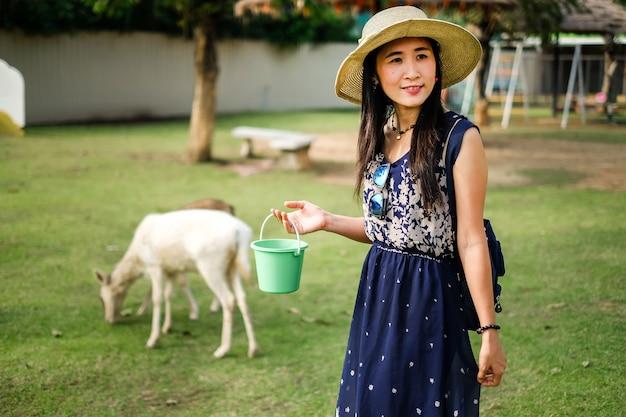 Viaggiatore della donna che alimenta animale nel farm open.lady turistico dà il cibo all'animale.