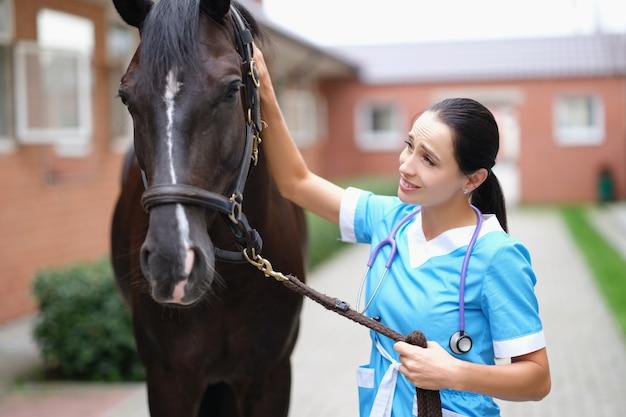 Medico veterinario della donna che tiene cavallo purosangue per le briglie nella stalla e accarezzando la testa