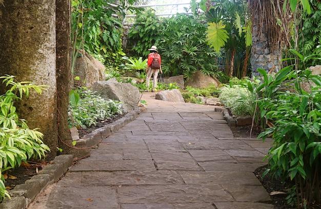 Donna che cammina nel parco delle piante sempreverdi