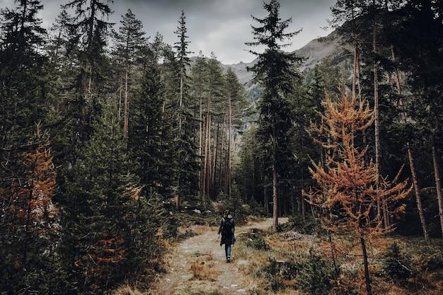Donna che cammina su un sentiero in una foresta verde cupa