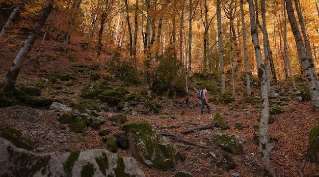Donna che cammina attraverso il bosco in autunno con il terreno coperto di foglie secche