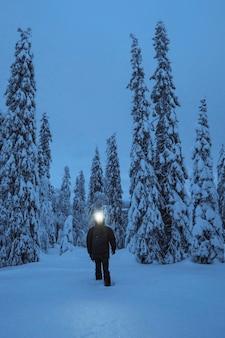 Donna che cammina con un proiettore in un innevato parco nazionale di riisitunturi, finland