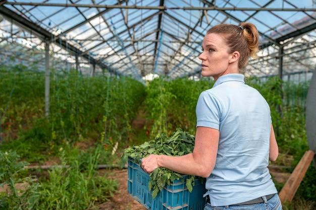 Donna con una scatola di erbacce nelle sue mani in una serra