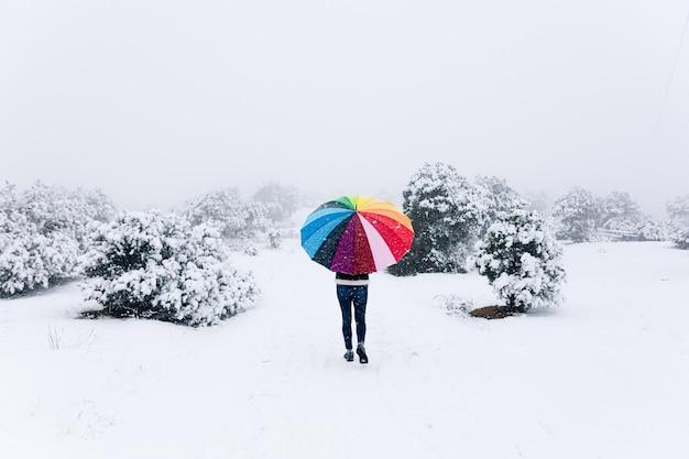 Donna con ombrello coloratissimo passeggiate nella foresta durante una nevicata.