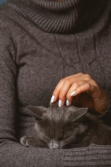 Donna con gatto grigio domestico nelle mani