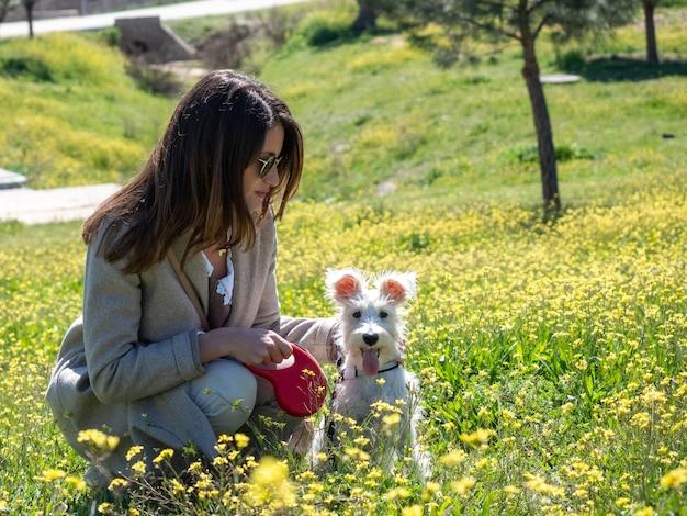 Donna con cane schnauzer nel campo di fiori gialli yellow