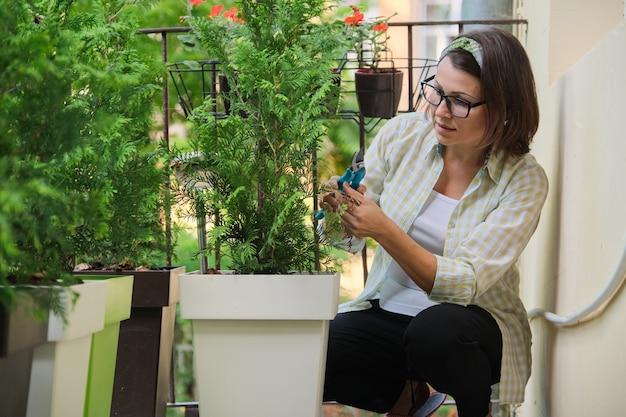 Donna con cesoie che si prendono cura di un giovane cespuglio sempreverde di pianta di thuja