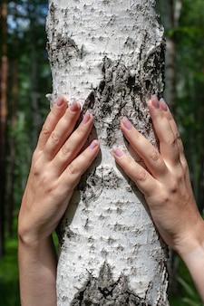 La donna con due mani abbraccia una betulla
