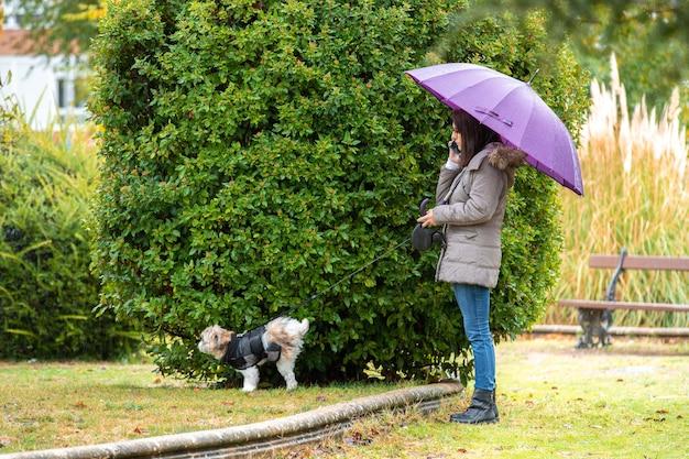 Donna con l'ombrello che cammina nel parco con il suo cane sotto la pioggia miters parlando al telefono