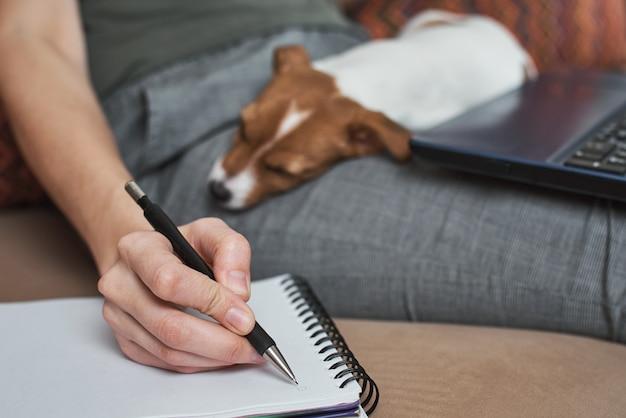 La donna scrive i piani in taccuino con il suo cucciolo di cane di jack rusel terrier. buone relazioni e amicizia tra proprietario e animale domestico