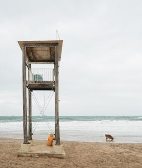 Donna in impermeabile giallo guardando il mare. cammina lungo la spiaggia in una giornata di brutto tempo.