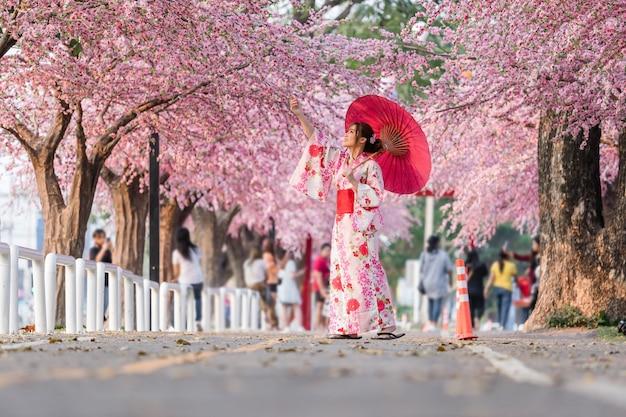 Donna in yukata (abito kimono) tenendo l'ombrello e guardando sakura fiore o fiore di ciliegio in fiore nel giardino