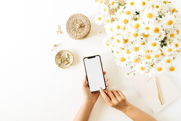 Womans mano tenere smartphone con schermo vuoto. area di lavoro della scrivania del ministero degli interni con il mazzo e il taccuino dei fiori della margherita della camomilla su fondo bianco