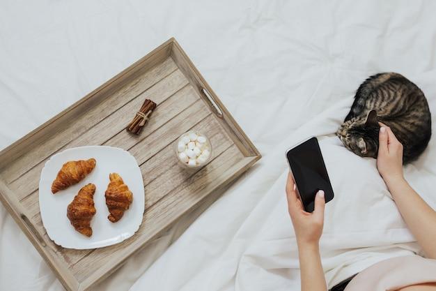 Le mani della donna tengono uno smartphone a letto e accarezzano il gatto