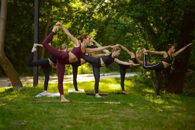 Donne che fanno esercizio di stretching, formazione yoga di gruppo sull'erba. meditazione, lezione di allenamento all'aperto, pratica di rilassamento