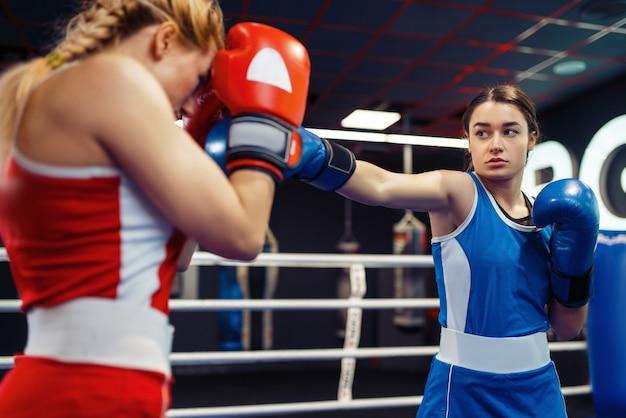 Donne in guanti boxe sul ring, box allenamento. pugili femminili in palestra, sparring partner di kickboxing nel club sportivo, pratica dei pugni
