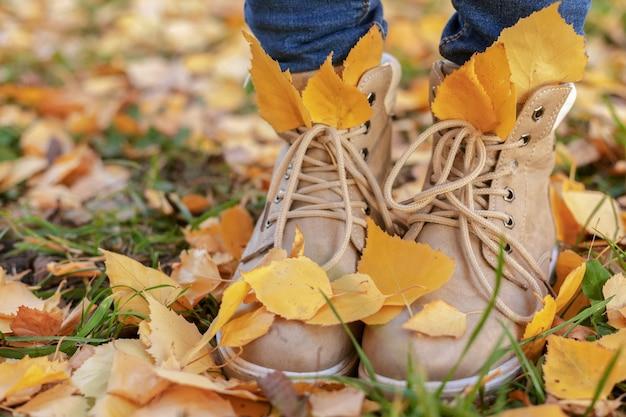 Piedi delle donne in scarpe marroni autunnali e blue jeans in foglie gialle autunnali
