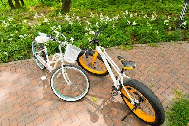 Le biciclette da uomo e da donna affacciate su un marciapiede in mattoni tra i fiori a bassa crescita nel parco