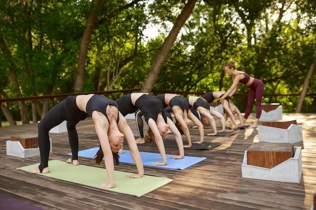 Donne in abiti sportivi in formazione yoga di gruppo nel parco estivo. meditazione, lezione in forma sull'allenamento all'aperto