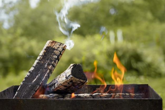 La combustione del legno in una griglia in natura.