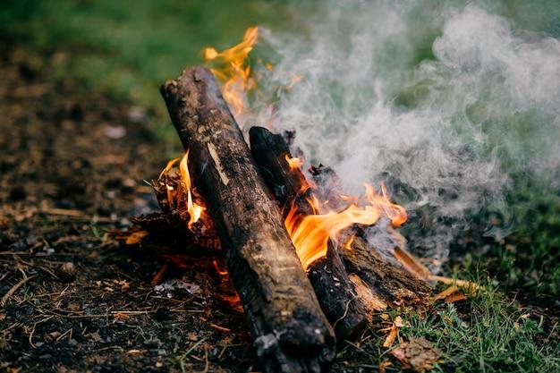 Legna a legna in natura