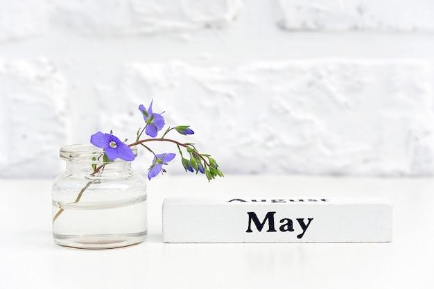 Mese di legno del calendario di maggio e fiore blu in vaso della bottiglia sul muro di mattoni bianco del fondo della tavola