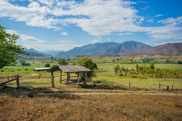 Capanna di legno nella campagna del giacimento del riso in pai, tailandia