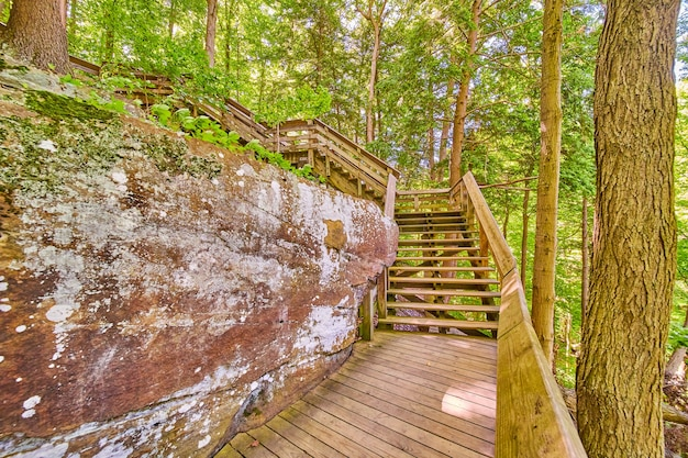 Wood park trail boardwalk di rock wall