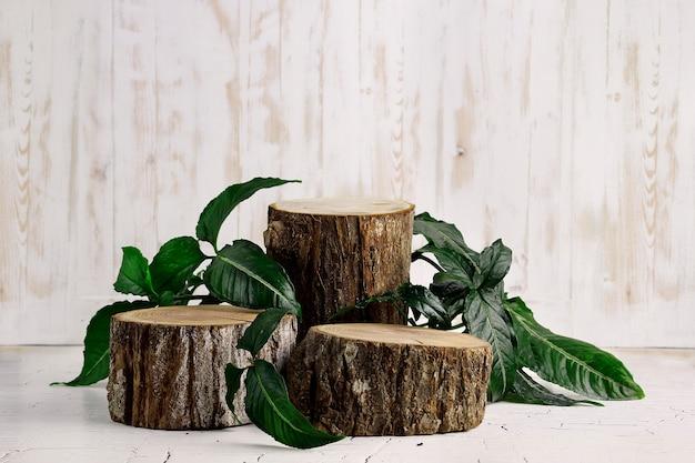 Podio e foglie di fetta di legno sulla parete di legno bianca