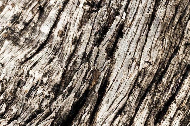 Struttura di legno da vicino