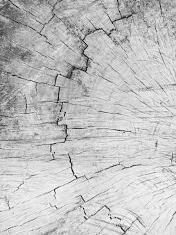 Sfondo di dettaglio texture legno.
