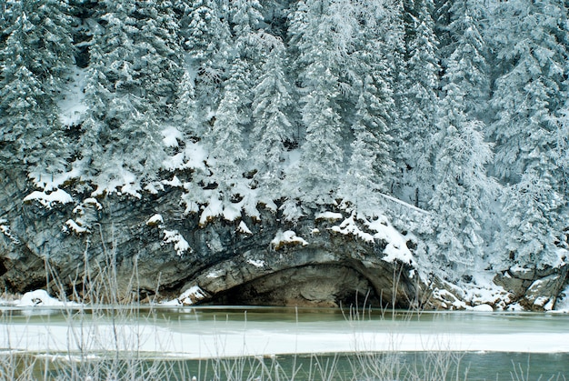 Scogliera calcarea boscosa sulla riva di un fiume invernale ghiacciato in tempo nuvoloso