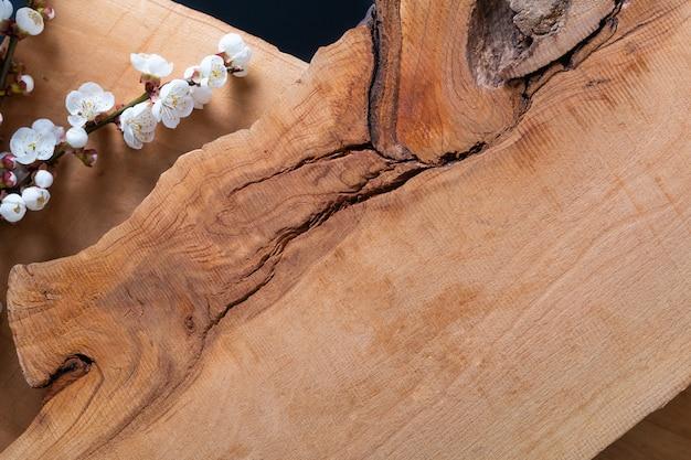 Il fondo di legno decora dal fiore del germoglio della prugna