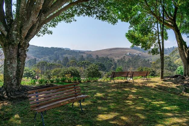 Panche in legno all'ombra degli alberi per riposarsi e godersi il panorama