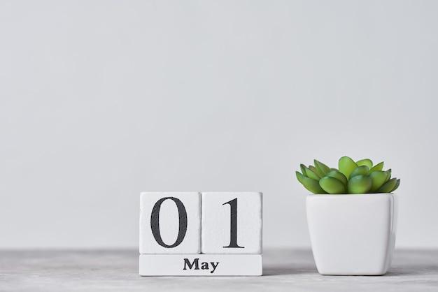 Calendario a blocchi di legno con data 1 maggio e piante succulente in vaso su sfondo grigio. concetto di festa del lavoro