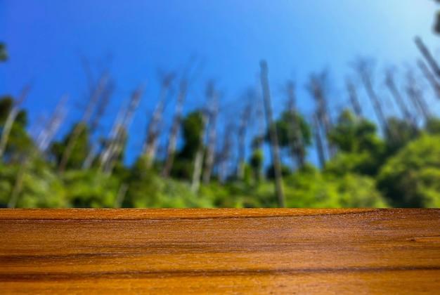 Tavola vuota del bordo di legno davanti al fondo vago della foresta per la visualizzazione del prodotto