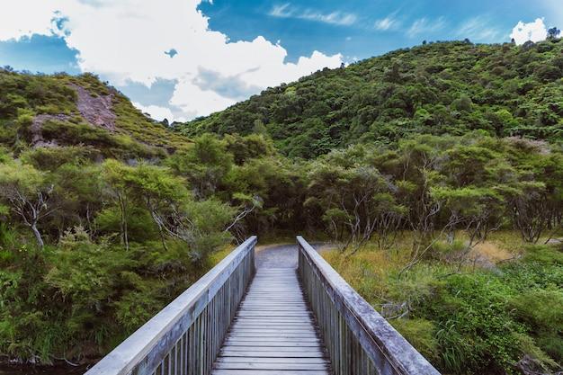 Ponte di legno nella foresta della valle vulcanica di waimangu in nuova zelanda