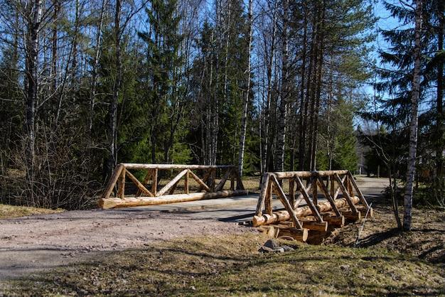 Ponte di legno nella foresta