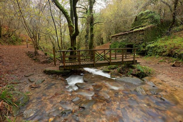 Ponte di legno e vecchia casa di pietra abbandonata accanto a un fiume nella zona della galizia, in spagna.