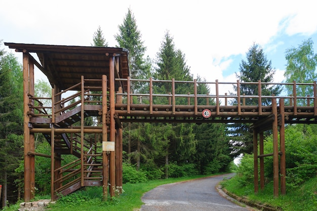 Un ponte di legno su una strada lungo un percorso di trekking nelle alpi italiane