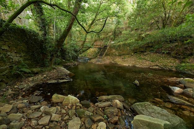 Ponte di legno su un piccolo fiume
